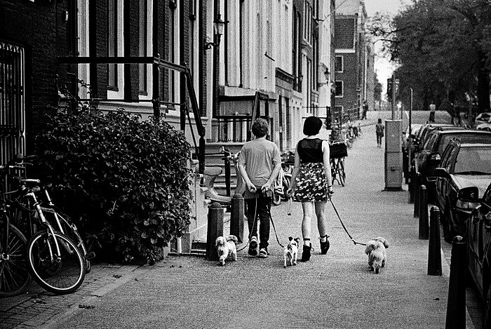 Amsterdam2015-12-resize.JPG